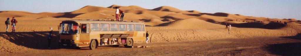 Die Wilde 13 in der Wüste